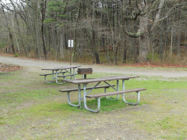 Picnic tables at Blue Hills