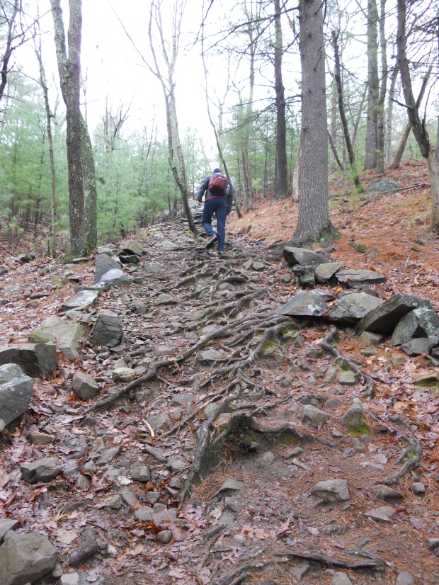 Tough Trail at Blue Hills